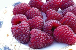 raspberry Joan J