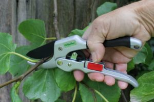 Darlac DP744 Super Classic Ratchet Pruner