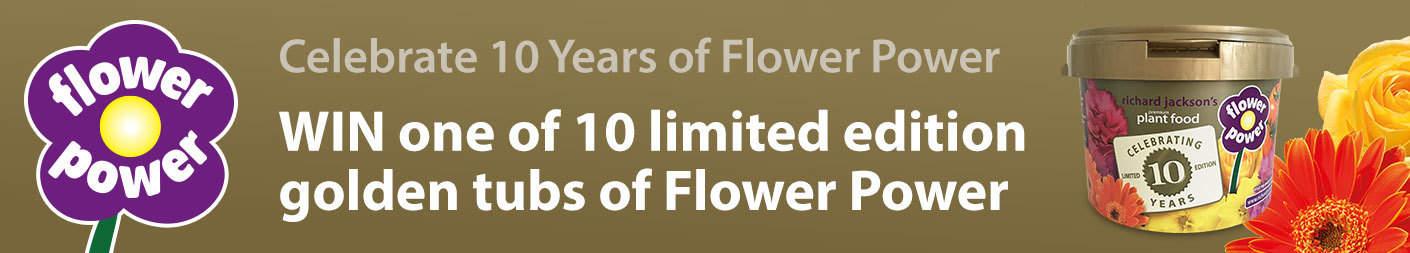 Flower Power 10 Year Anniversary Comp Banner