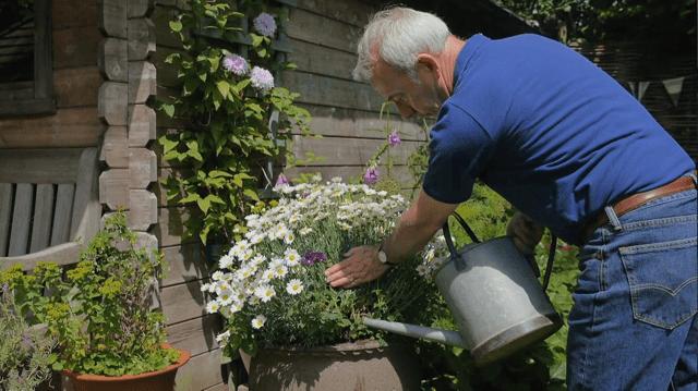 Richard Jackson feeding his plants