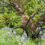 The Flower Patch bike