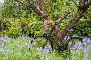 The Flower Patch bike