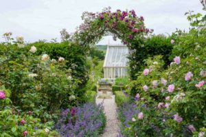 The Old Rectory Garden