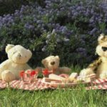 Teddy Bear's picnic