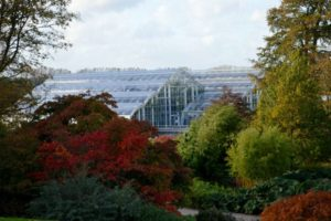 Wisley in autumn