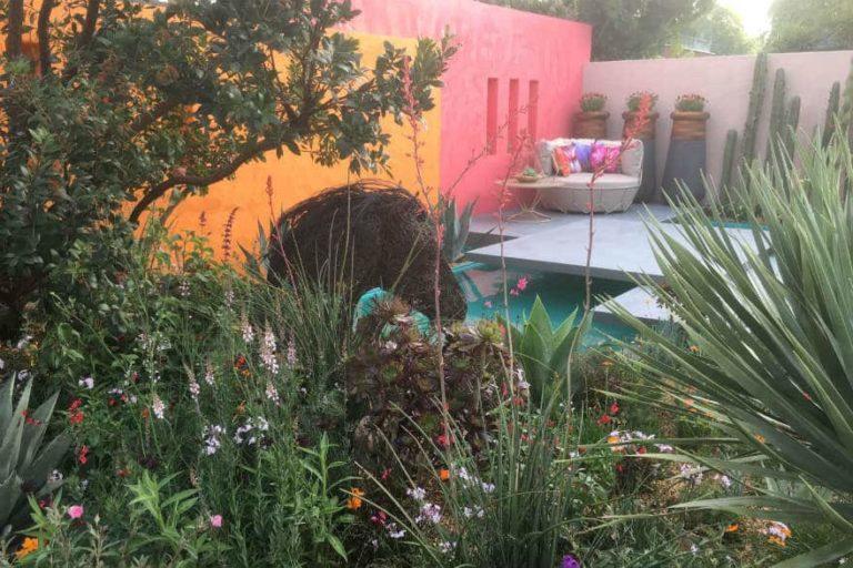 Inland Homes Beneath a Mexican Sky Fresh Garden