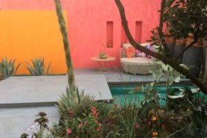 colourful wall in garden