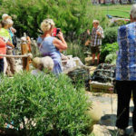 Open day at Driftwood Gardens