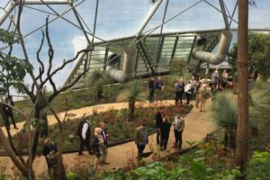 The new Australian garden at the Eden Project