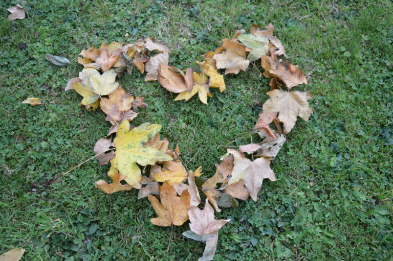 Leafy heart