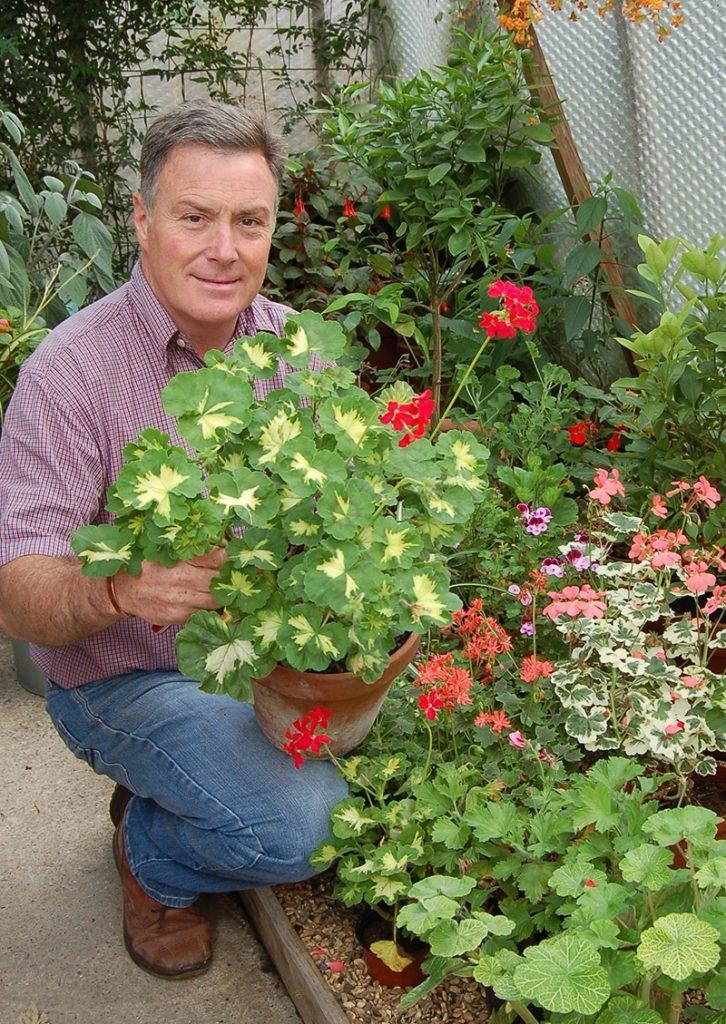 Martin Fish holding container of pelargoniums