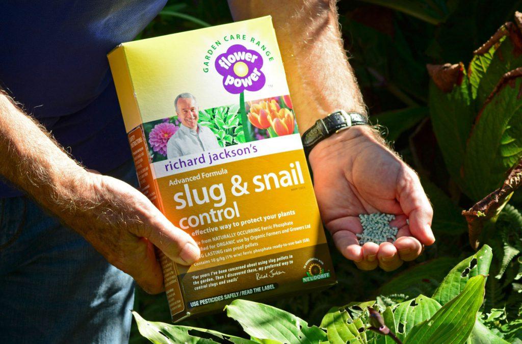 Richard holding a box of Slug and Snail Control