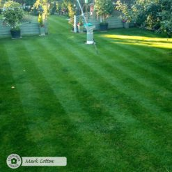 Lawn Magic 1 Litre