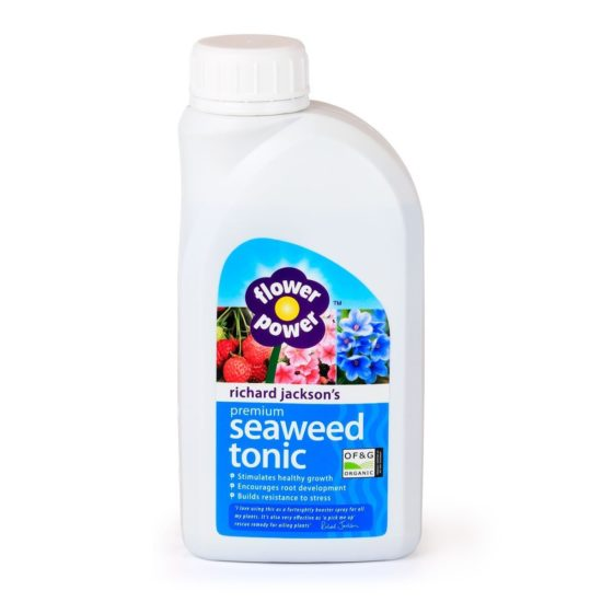 Premium Organic Seaweed Tonic - 500ml