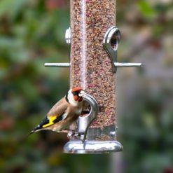 Bird Food 5kg