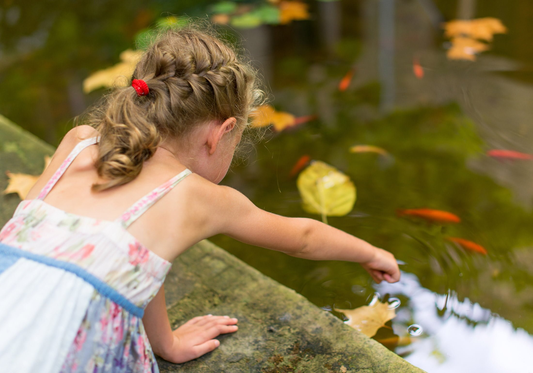 How to stay safe in your summer garden