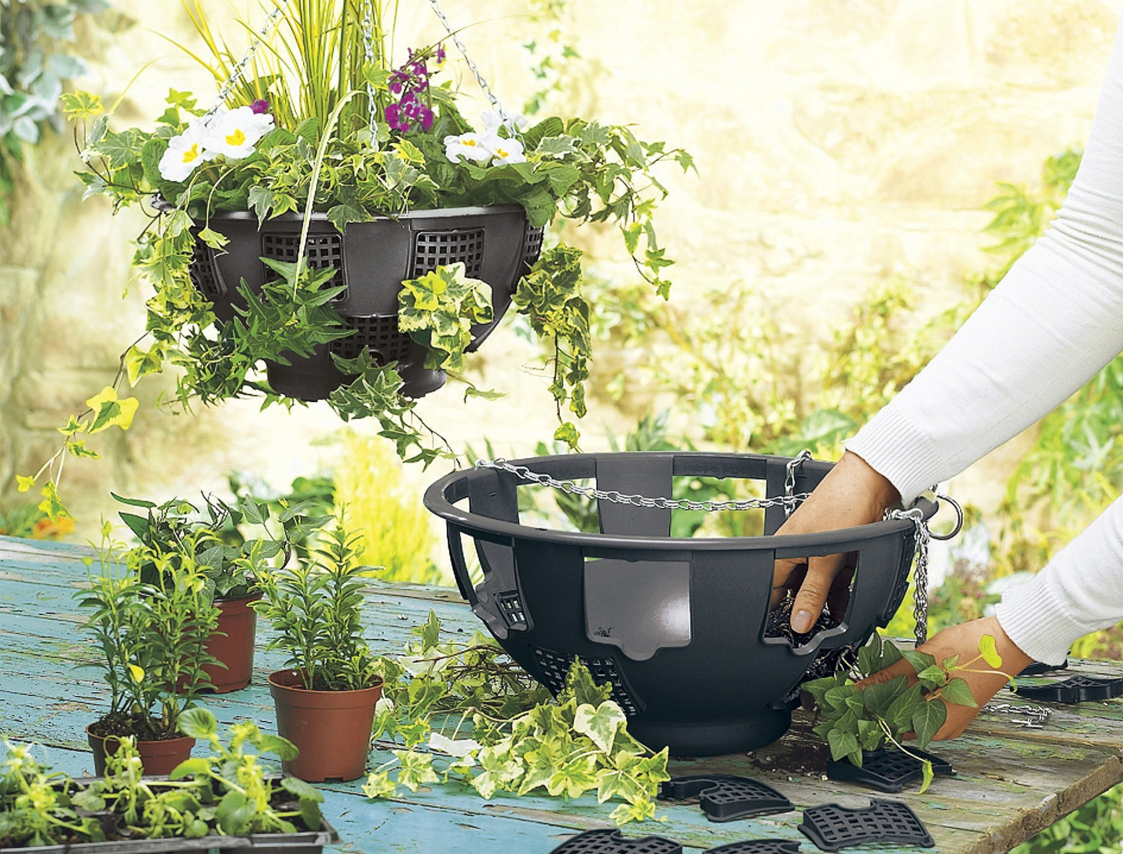 What's the secret of brilliant hanging baskets?