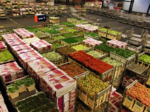 Early morning at Aalsmeer Flower Auction.