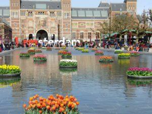 Tulips at Museum Square, Rijksmuseum