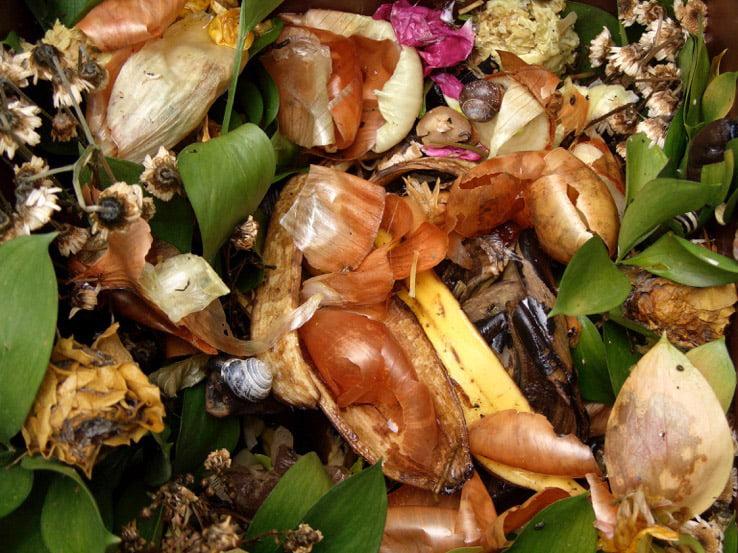 kitchen waste composting