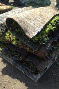 meadow mat