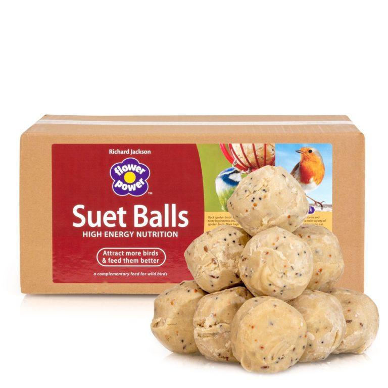 Suet Balls by Richard Jackson box of 50 suet balls