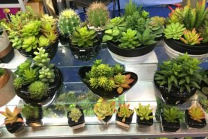 Artificial cacti and succulents