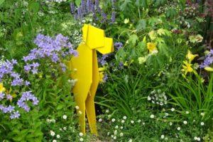 Dog's Trust Garden