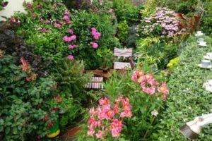 wall of flowers in pots