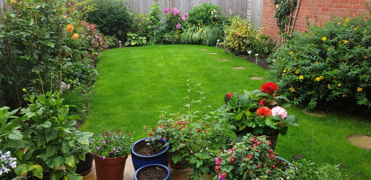 lush green lawn with borders