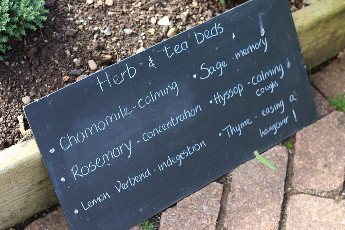 blackboard with herb names