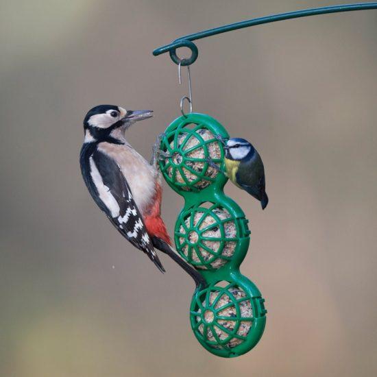 Jacobi Jayne hanging basket ball feeder with woodpecker and blue tit feeding