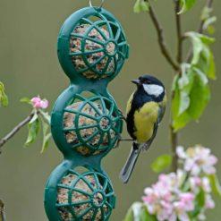 Jacobi Jayne hanging ball feeder with blue tit feeding, close up