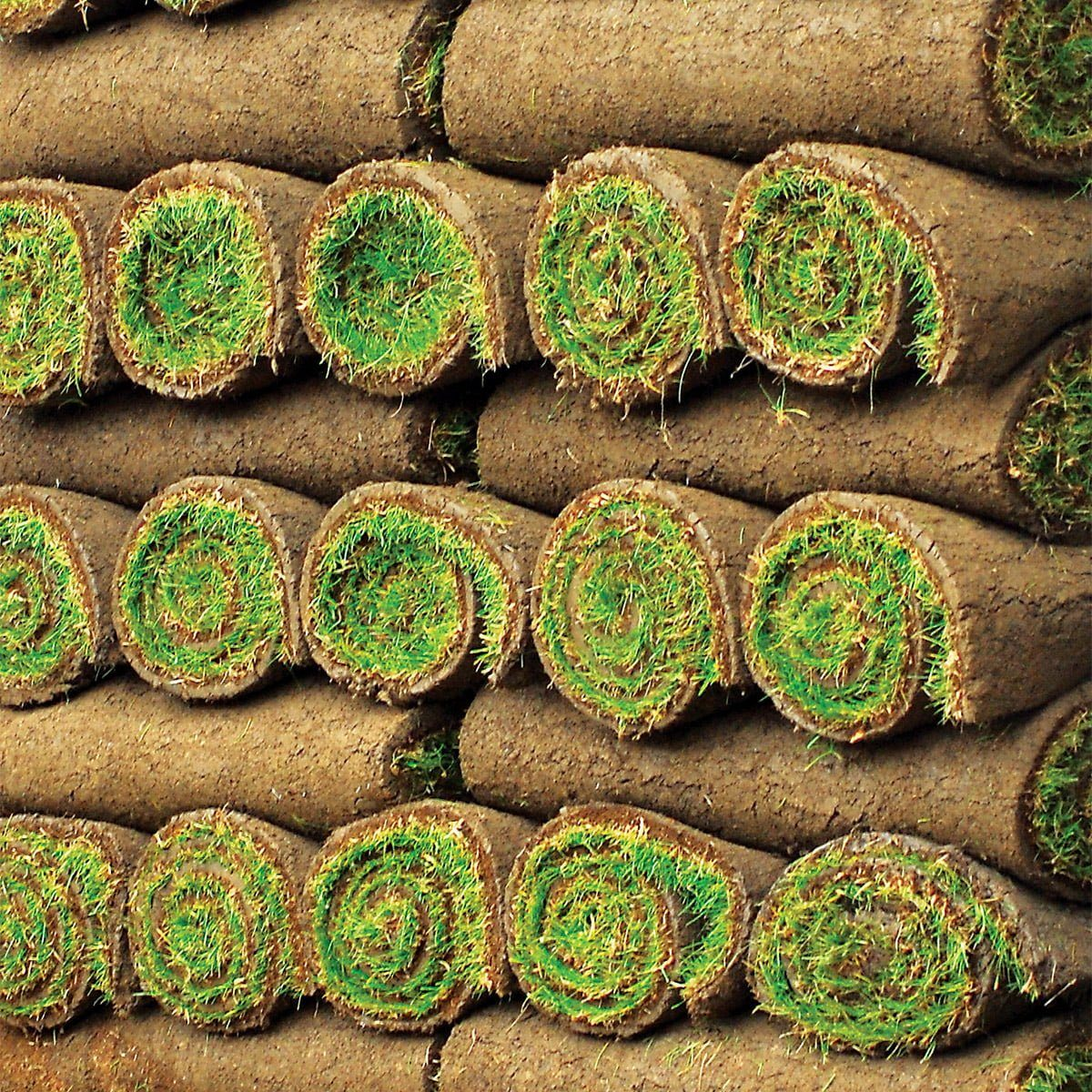 stacked rolls of turf