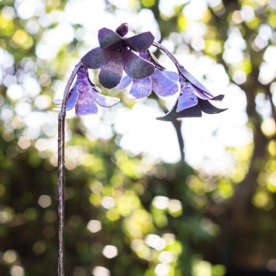 Ornamental Bluebell Flower