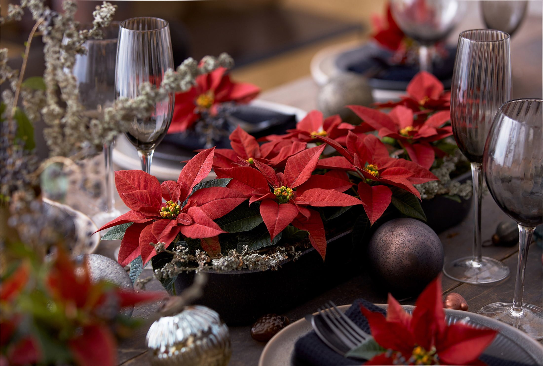 poinsettia table centrepiece decoration