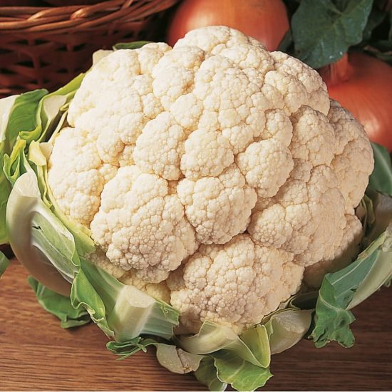 cauliflower aalsmeer
