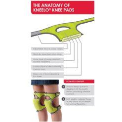 diagram of anatomy of Kneelo kneel pads