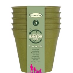 Bamboo pots sage green 3 inch