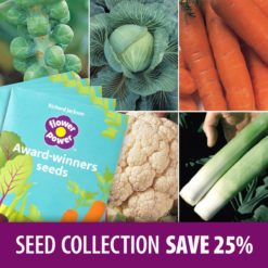 Autumn & Winter Harvest Seed Collection