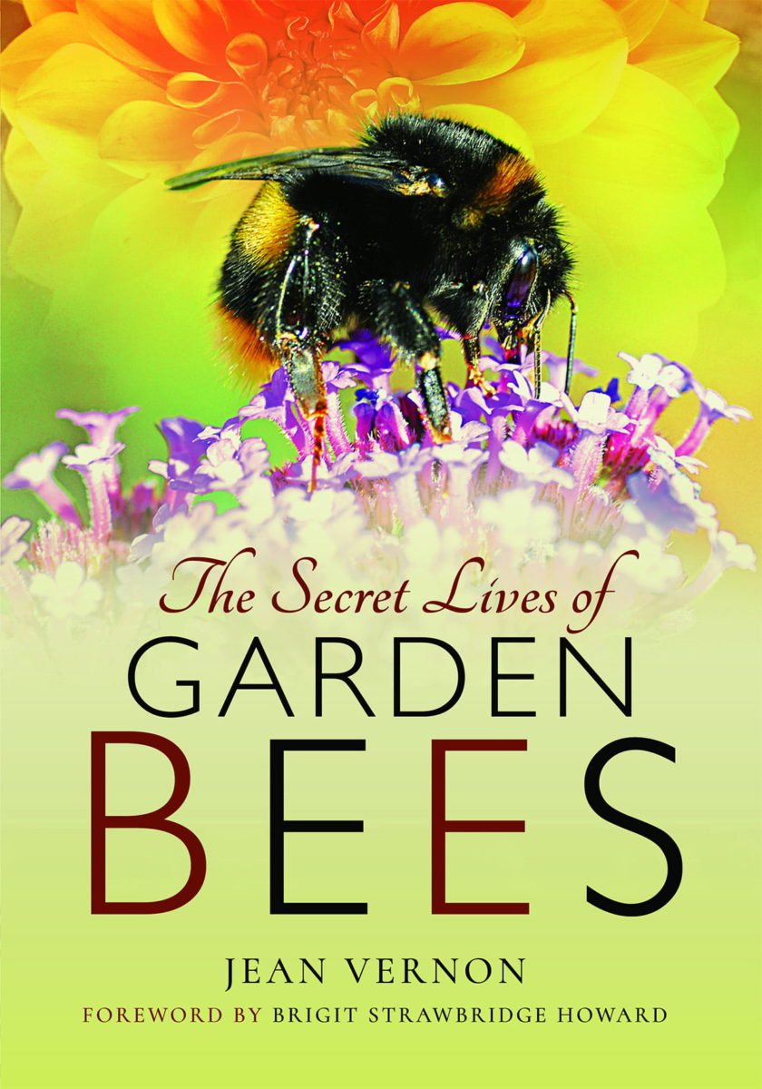 The Secret Lives of Bees book cover by Jean Vernon