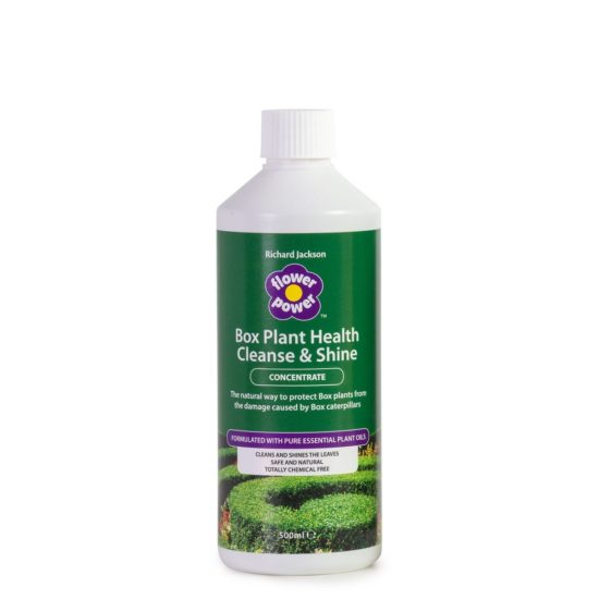 Box plant cleanse and shine concentrate bottle