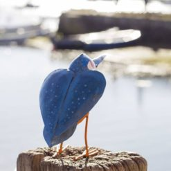 Chi Africa Kingfisher back