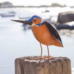 Chi Africa Kingfisher front