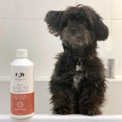Millington's Flea & Tick Shampoo 500ml