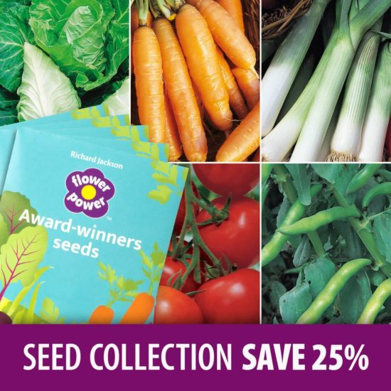 March sowing seed collection