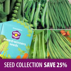 Pea & Bean Seed Collection