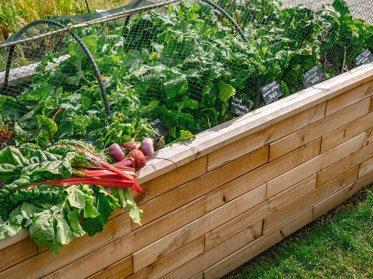 WoodBlocX raised bed