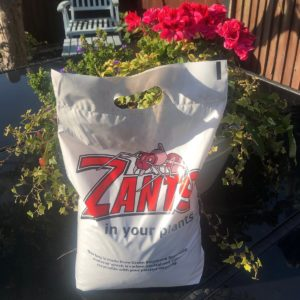 Zants in your Plants