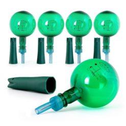 Set of 5 Flower Power Watering Globes